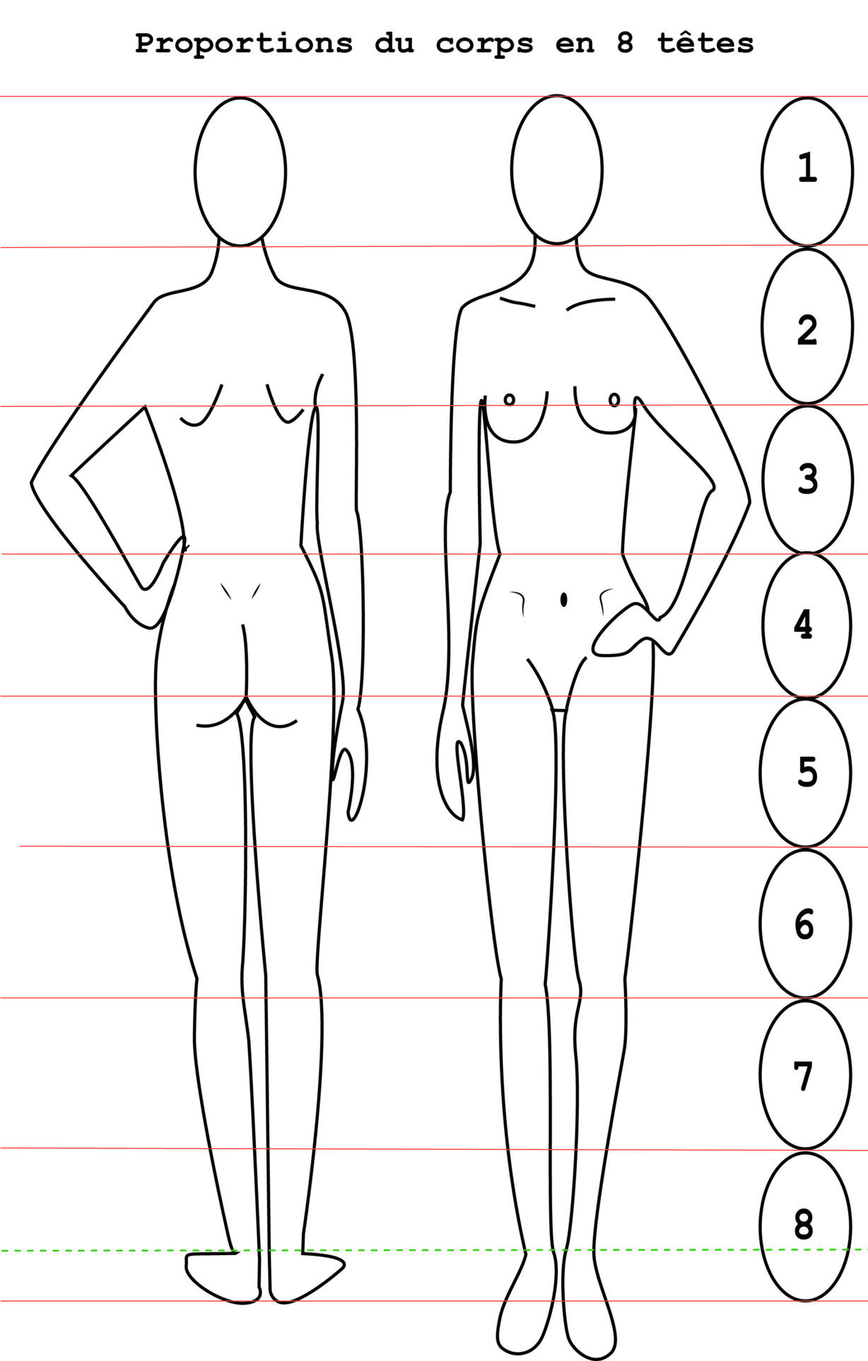 comprendre : patrons de couture et stature